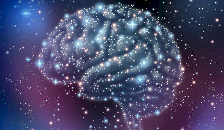 A fost descoperit unul dintre cei mai importanţi receptori din creier care ne asigură sănătatea mentală