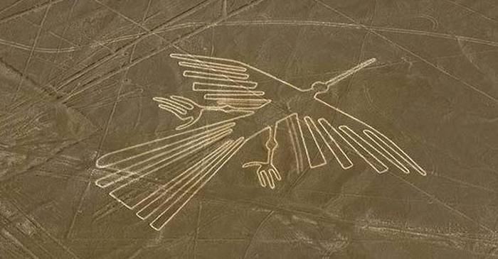 Au fost descoperite 143 de Linii Nazca noi