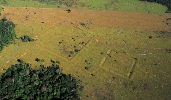 Civilizatia pierduta a Amazonului a fost descoperita