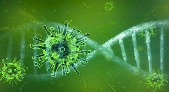 China anunţă, după teste clinice, că medicamentul antiviral pentru gripă Favipiravir este eficient împotriva COVID-19